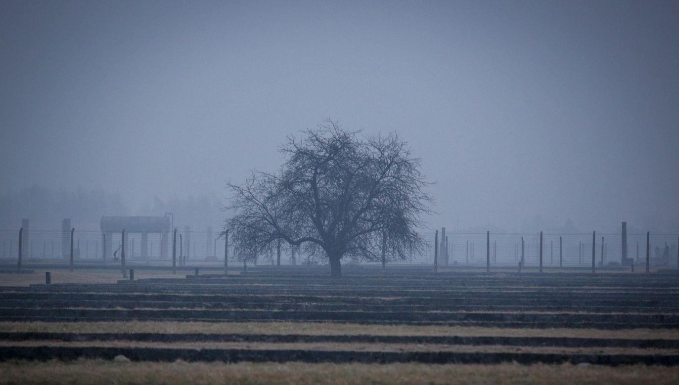 Próba kradzieży cegieł z miejsca kaźni Auschwitz-Birkenau (fot. Stanisław Rozpędzik/PAP)
