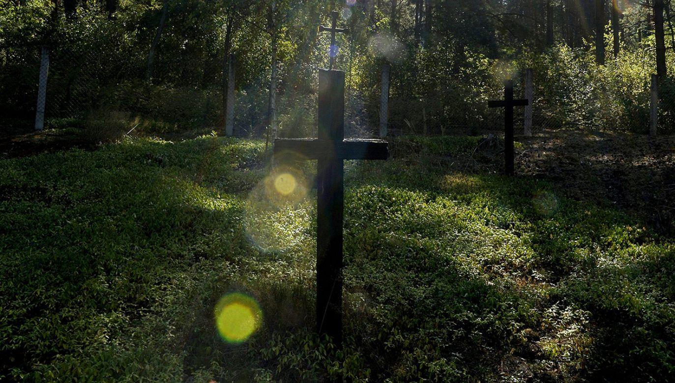 W 1943 roku Ukraińska Powstańcza Armia zamordowała ponad 1000 mieszkańców Ostrówek oraz sąsiedniej Woli Ostrowieckiej  (fot. arch. PAP/Darek Delmanowicz)
