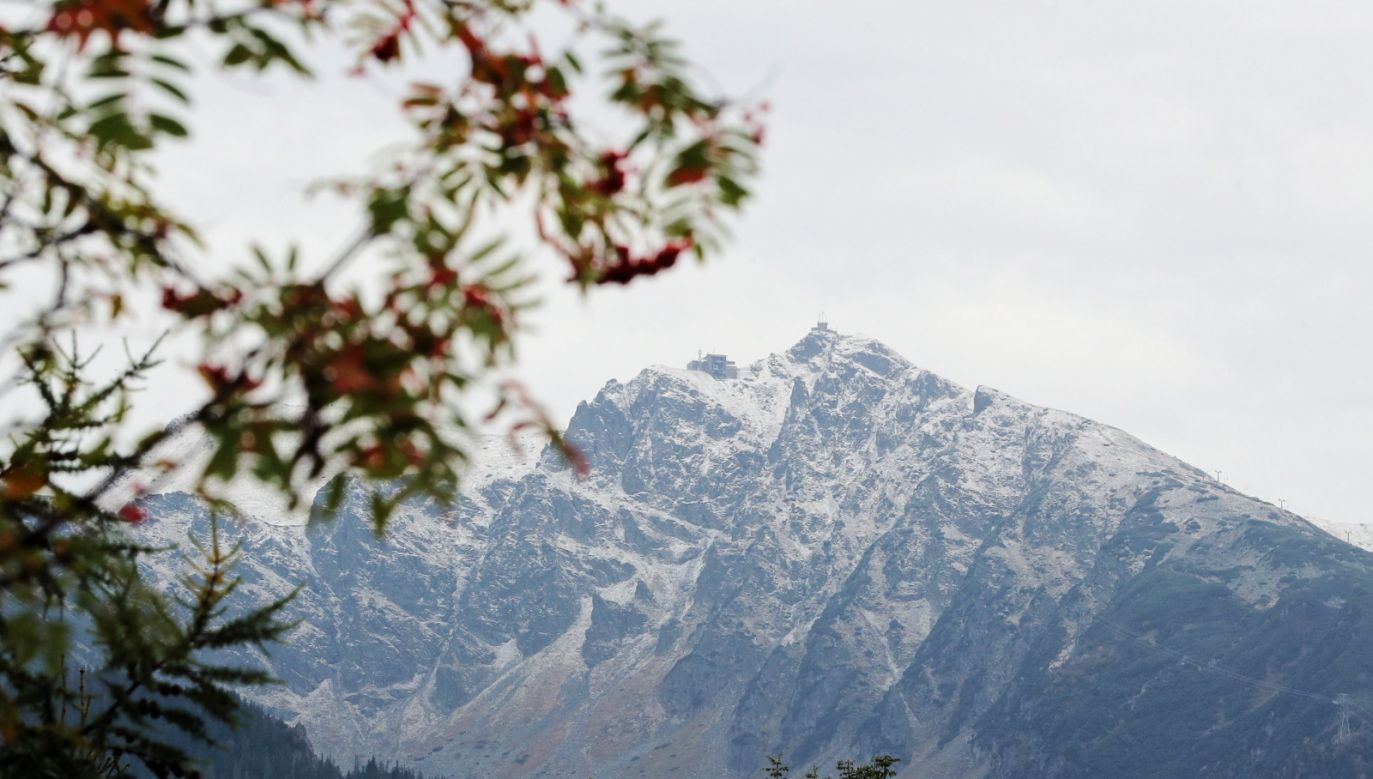 Weather forcasters expect 20 cm of snow to fall in the coming weeks. Photo: PAP/Grzegorz Momot