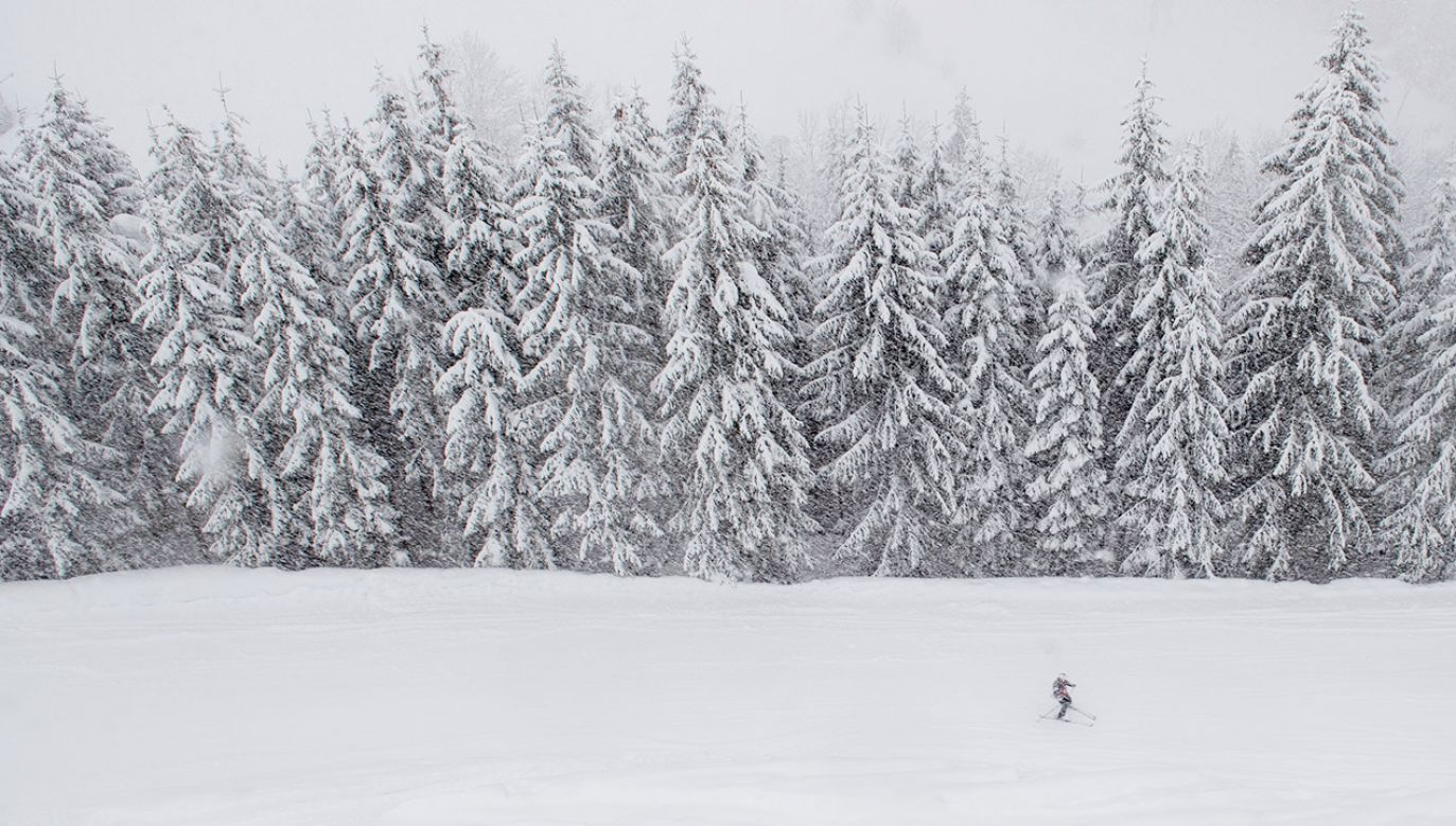 Poszkodowany narciarz również proszony jest o kontakt z policją (fot. PAP/EPA/KERSTIN JOENSSON, zdjęcie ilustracyjne)