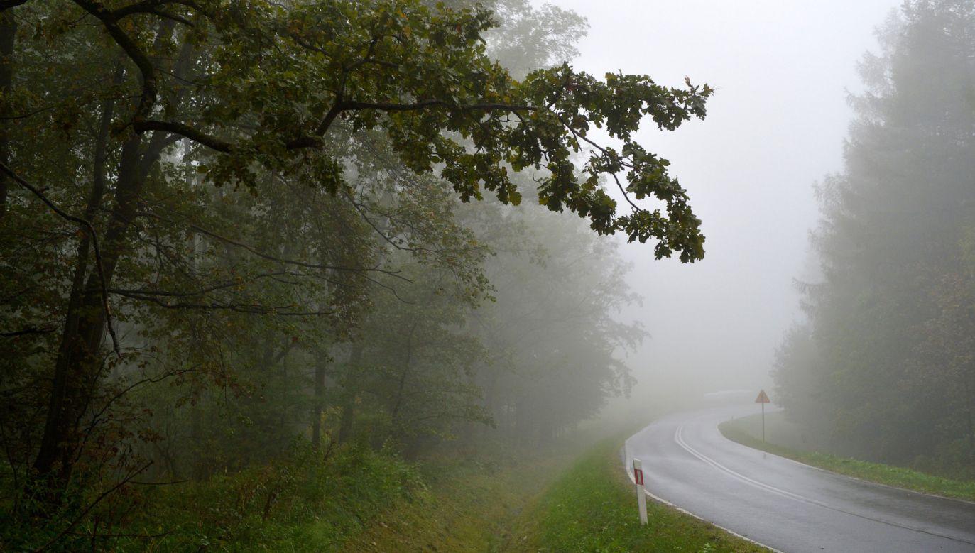W piątek o godzinie 22.02 rozpocznie się astronomiczna jesień (fot. PAP/Darek Delmanowicz)