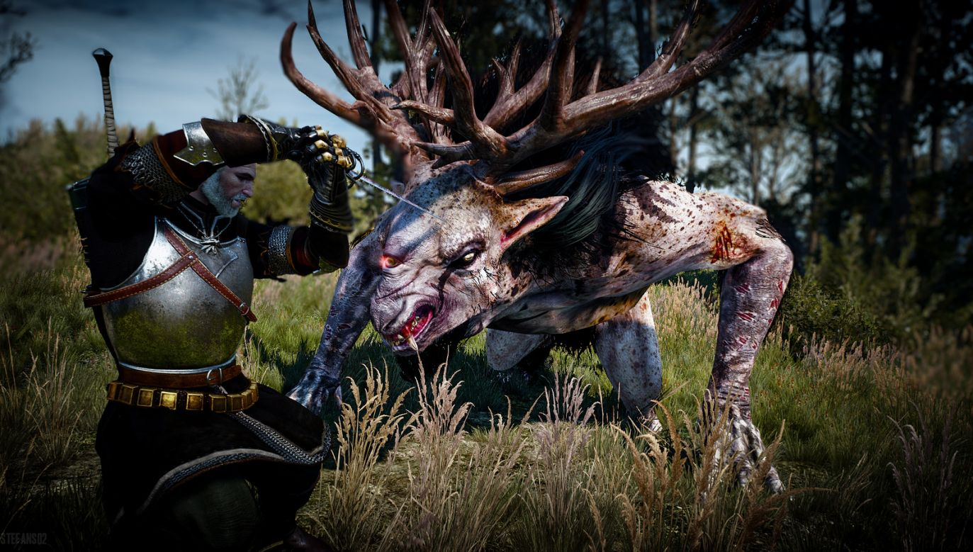 A screenshot from Witcher 3: Wild Hunt video game. Photo: Flickr/Stefans02