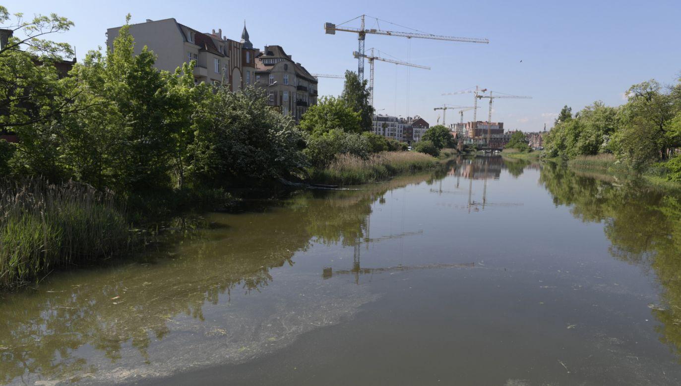 Z powodu awarii przepompownia ścieków zrzucała zanieczyszczenia wodociągowo-kanalizacyjne do Mołtawy (fot. PAP/Adam Warżawa)