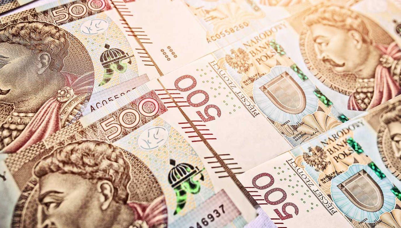 Dochody budżetu państwa mają wynieść w przyszłym roku 387,6 mld zł (fot. Shutterstock/ambrozinio)