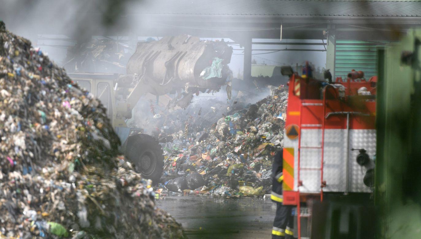 Dogaszanie pożaru składowiska odpadów w miejscowości Kostrzyca na Dolnym Śląsku (fot. PAP/Maciej Kulczyński)