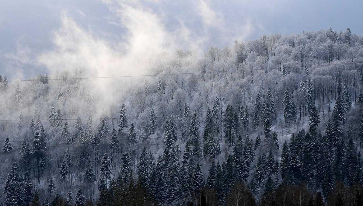 Jak informuje IMiGW, śniegu w górach będzie przybywało (fot. arch. PAP/Darek Delmanowicz)