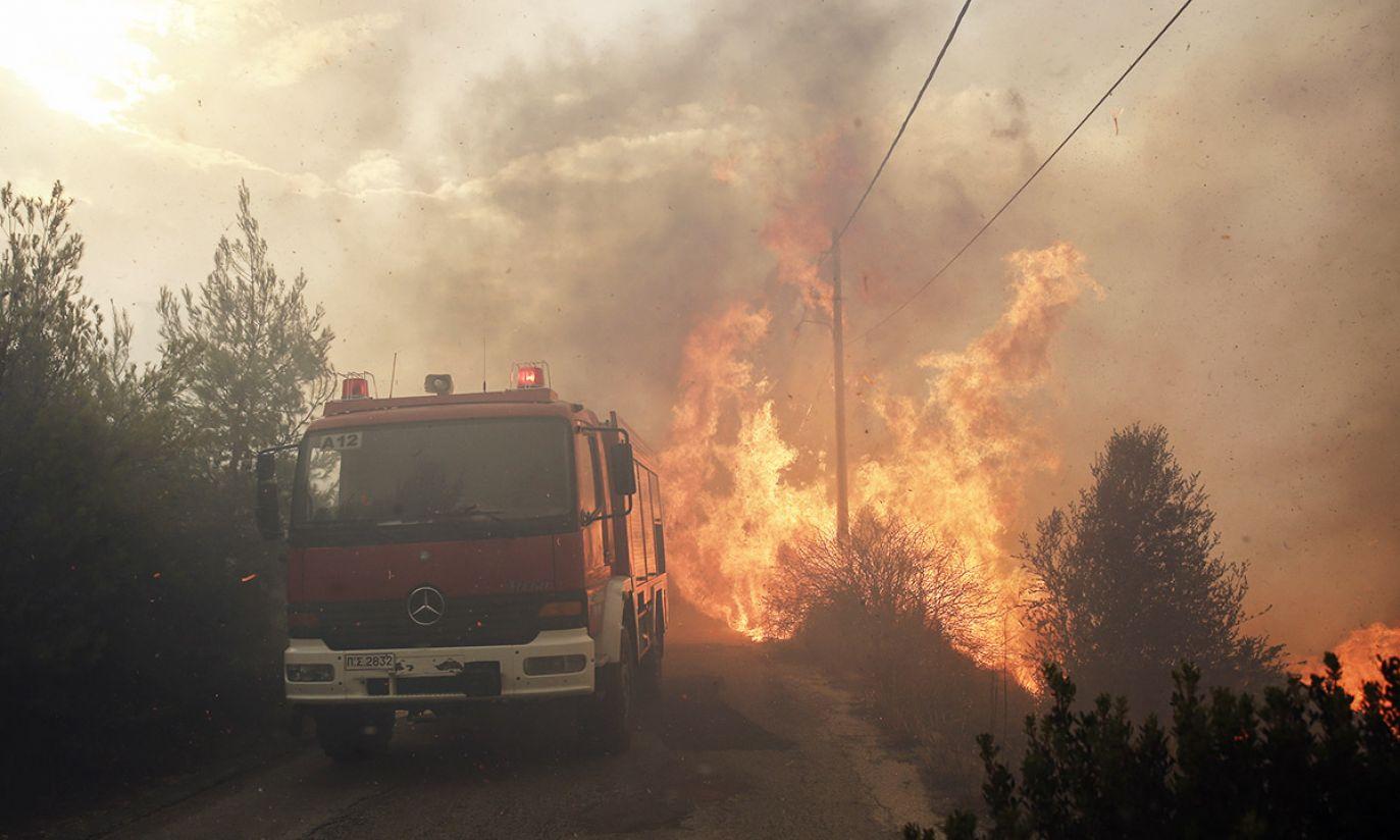 (fot. PAP/EPA)