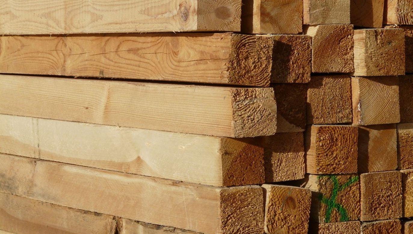 Popyt na drewno ponad 27-krotnie przewyższył podaż (fot. Pixabay/Hans)