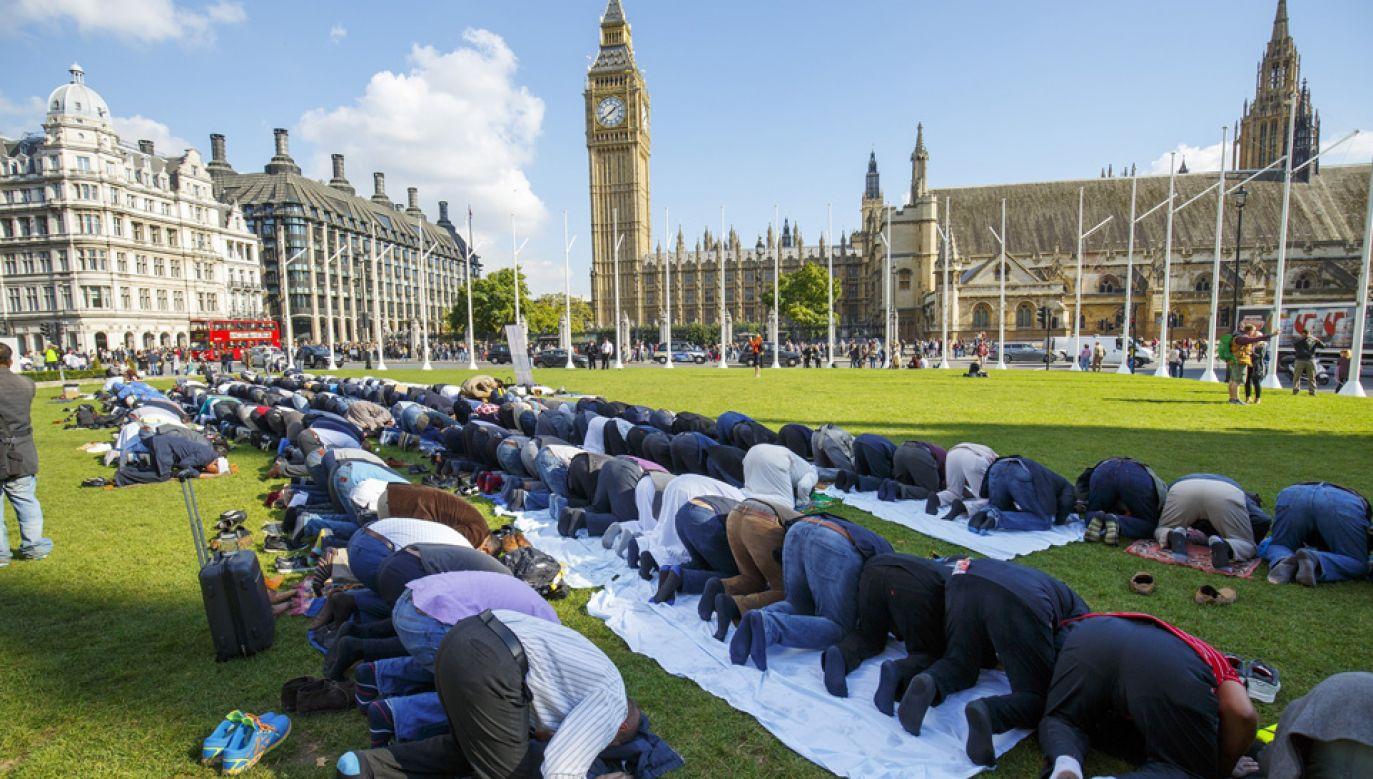 Zaledwie 17 proc. Brytyjczyków wierzy, że rząd mówi prawdę o imigracji (fot. Tolga Akmen/Anadolu Agency/Getty Images)