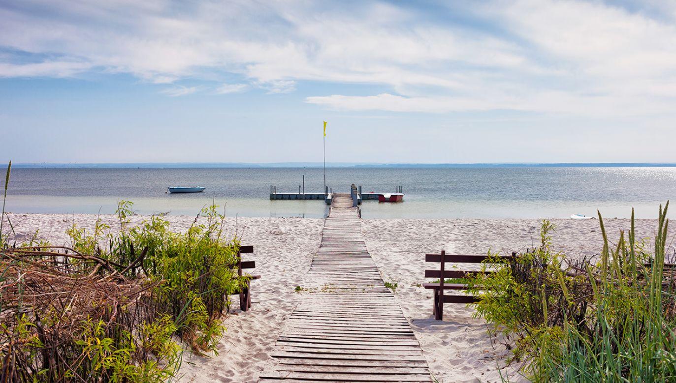 W Zatoce Puckiej spadła populacja ryb (fot. Shutterstock/Artur Bogacki)