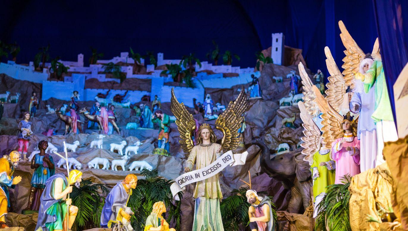 Ubiegłoroczna szopka bożonarodzeniowa w kościele ojców franciszkanów przy Placu Bernardyńskim w Poznaniu (fot. PAP/Marek Zakrzewski)