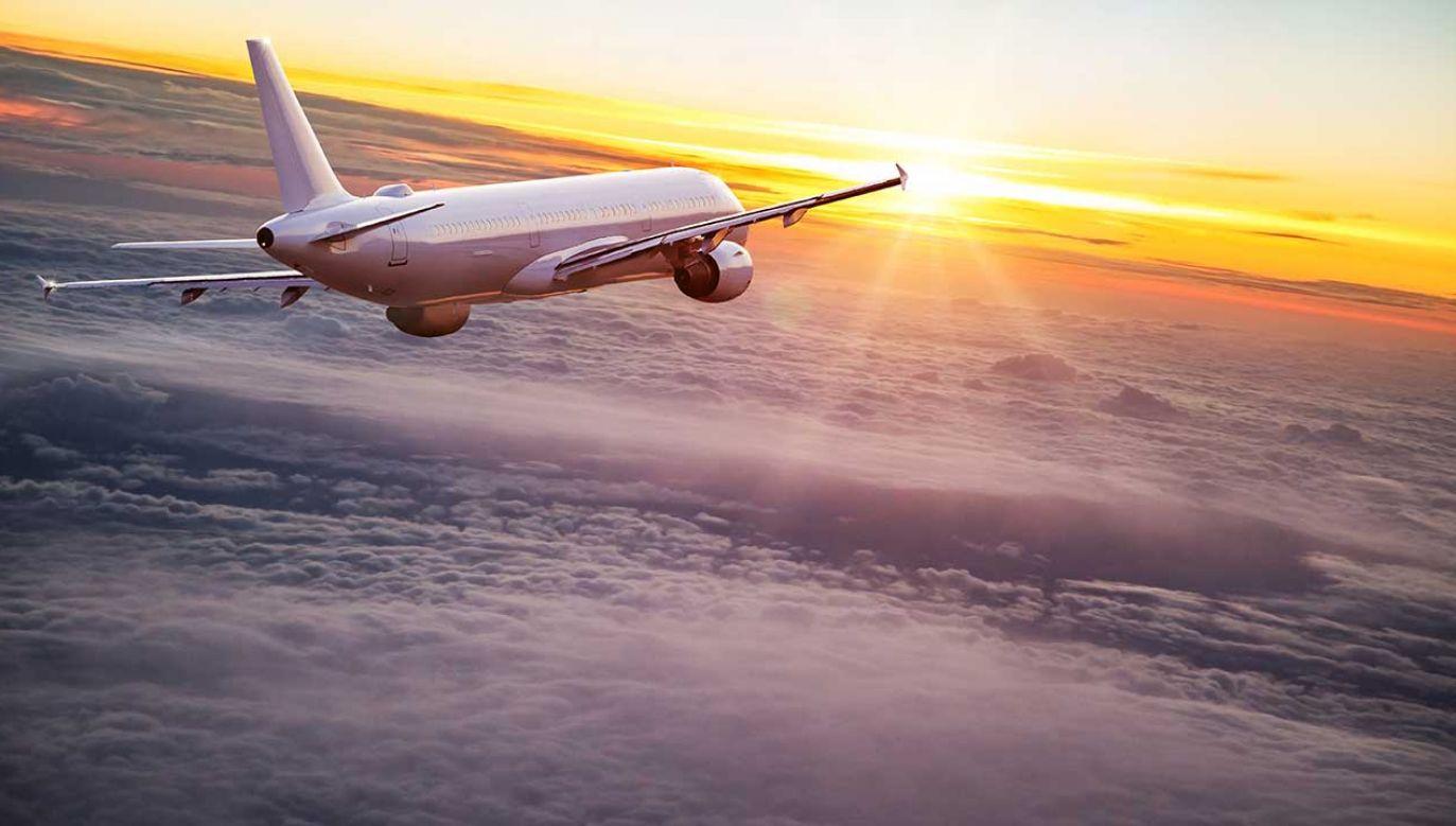Zdaniem pełnomocnika rządu ds. CPK, nasz kraj stanie się jednym z liderów rynku lotniczego (fot. Shutterstock/ Lukas Gojda)