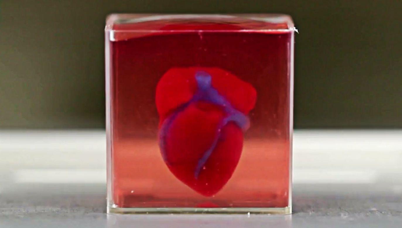 Kolejnym krokiem ma być nauczenie wydrukowanych serc synchronicznego kurczenia się i pompowania krwi (fot. jpost.com)