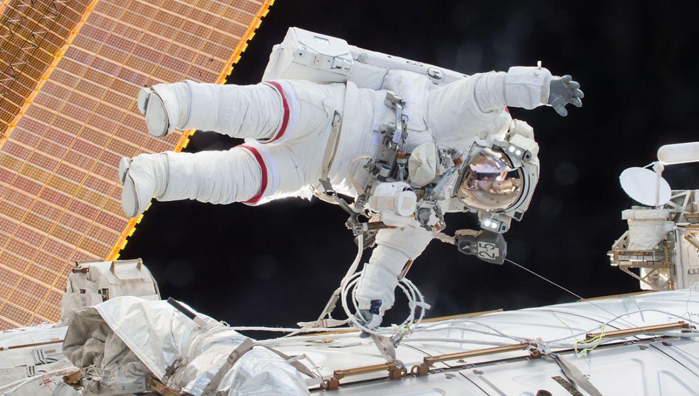Wyniki eksperymentu mają pomóc w zlikwidowaniu problemu zaniku mięśni u astronautów (fot. REUTERS/NASA/Scott Kelly)