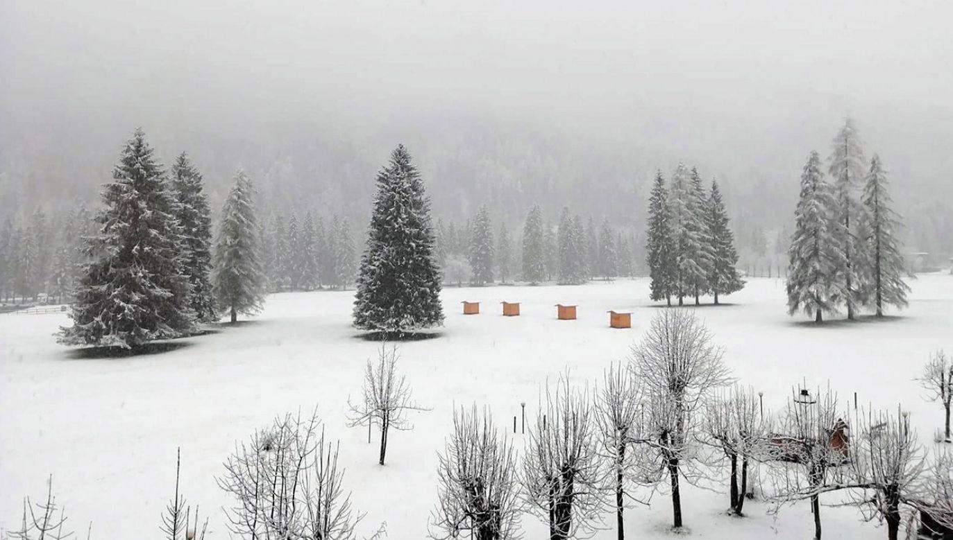 Najchłodniej zapowiada się sobota (fot. PAP/EPA)