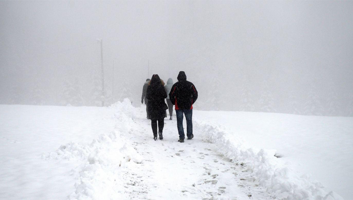 Na południu kraju wystąpiły obfite opady śniegu (fot. PAP/Darek Delmanowicz)