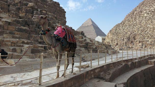 Wakacje w Egipcie kuszą przede wszystkim ceną (fot. Staleybk/Pixabay)