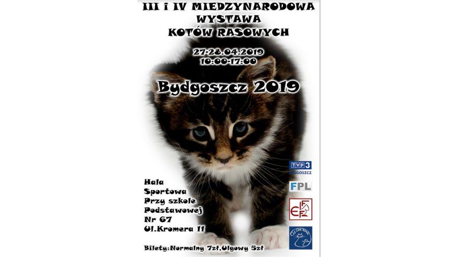Niewiarygodnie III i IV Międzynarodowa Wystawa Kotów Rasowych - TVP3 Bydgoszcz PE02