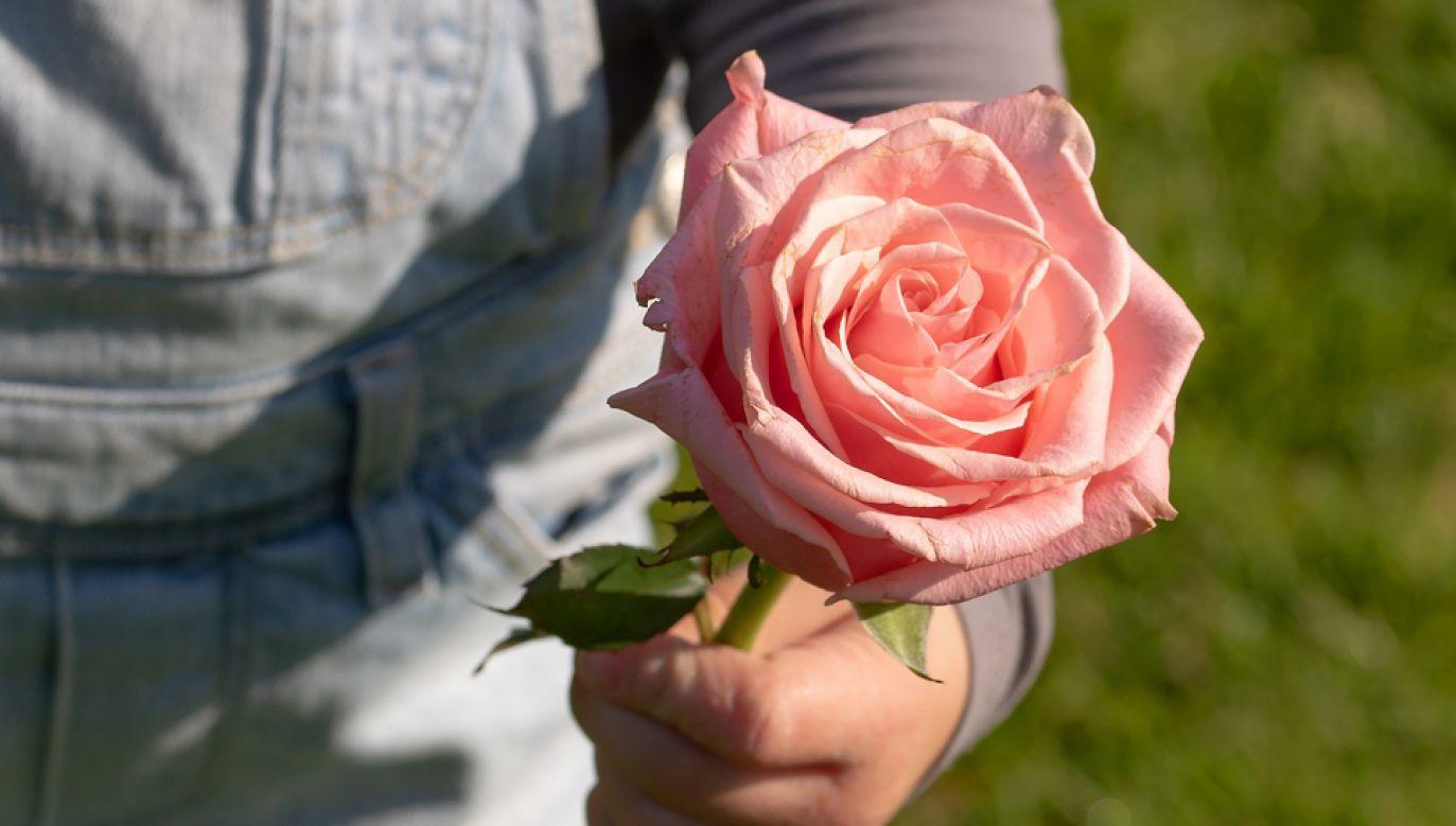 26 maja wszystkie mamy obchodzą swoje święto (fot. pixabay/Myriams-Fotos)