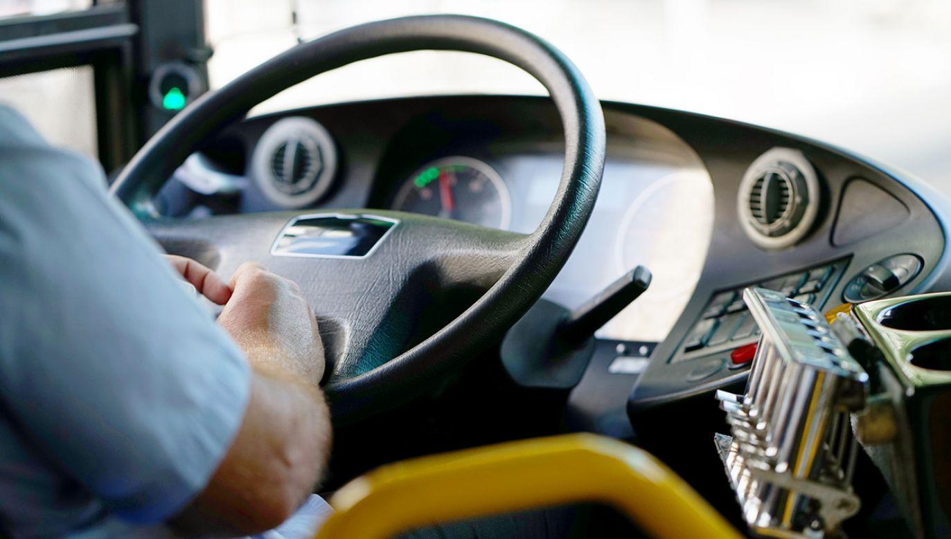 Pijany kierowca wiózł 15 uczniów (fot. Shutterstock/svershinsky)