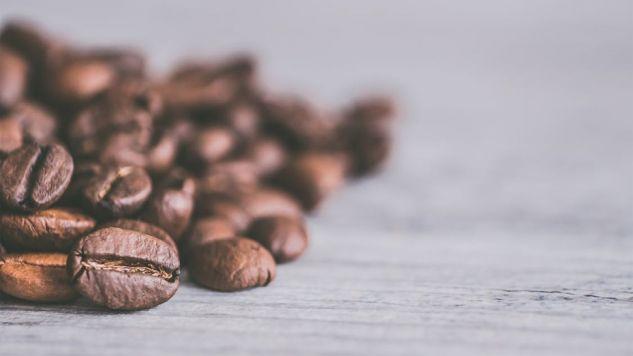 Jednym z zagrożonych gatunków jest dzika Coffea arabica (fot. Pexels)
