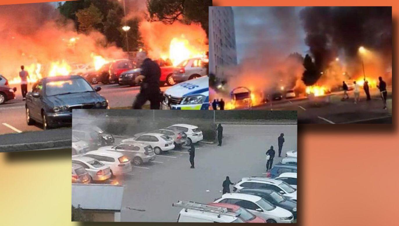Policja nie wyklucza, że to zorganizowana akcja (fot. TT/ Raveen Aujmaya/Johan Jansson)