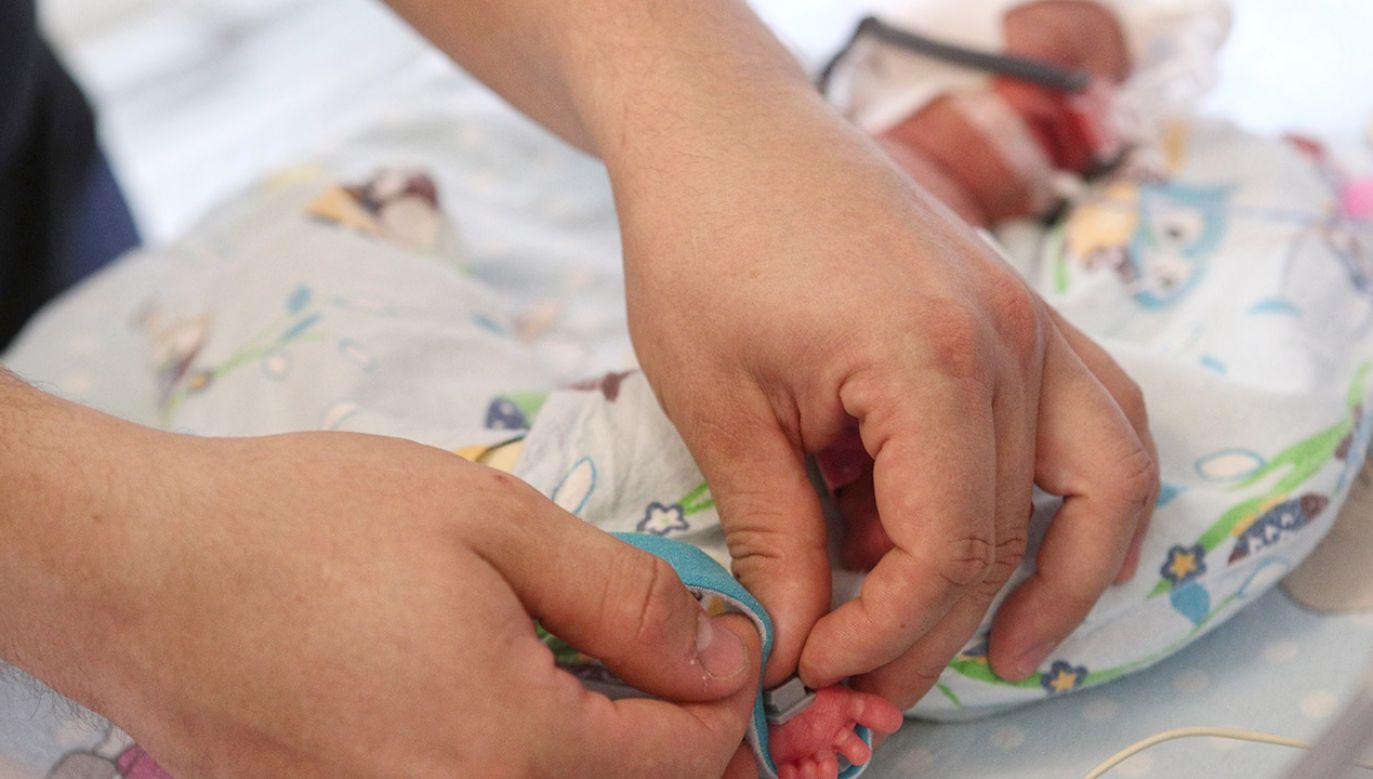 Filip, Tymon, Zosia, Kaja, Malwina i Nela urodzili się 20 maja w Szpitalu Uniwersyteckim (fot. PAP/Łukasz Gągulski)