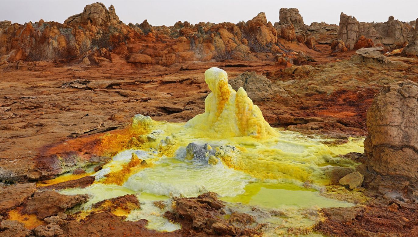 Nanobakterie żyją w skrajnie kwaśnym środowisku (fot. Wiki/A.Savin)