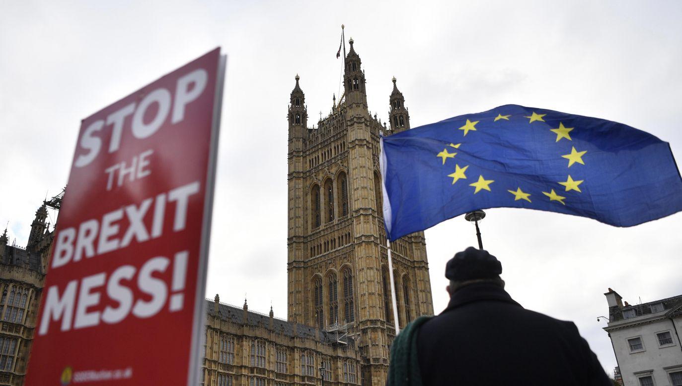 Brytyjczycy protestują w związku z brexitem (fot. PAP/EPA/NEIL HALL)
