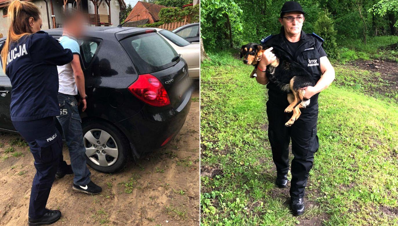 Cierpienie Psotki udało się przerwać dzięki reakcji świadków (fot. Policja warmińsko mazurska/FB/Monika Hyńko)