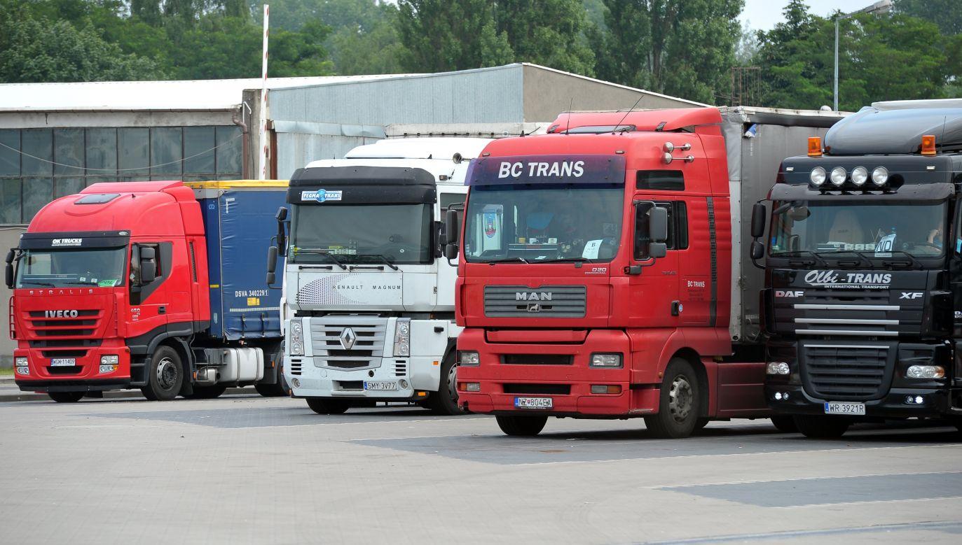 Trucks in transit to Poland:  Photo: PAP Marcin Bielecki