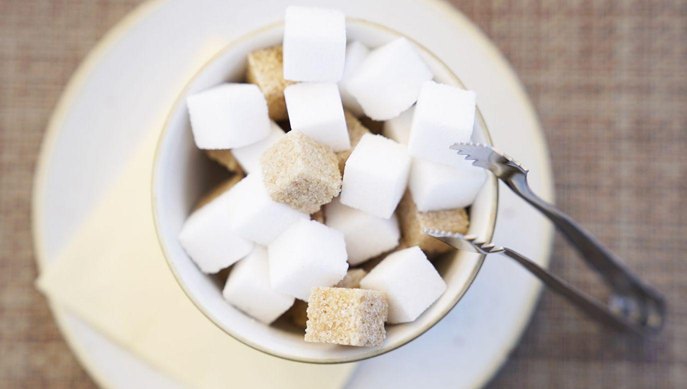 Polska jest jednym z liderów rynku cukrowniczego w Europie, ale znaczną część zysków przejmują Niemcy (fot. Shutterstock/Eduards89)