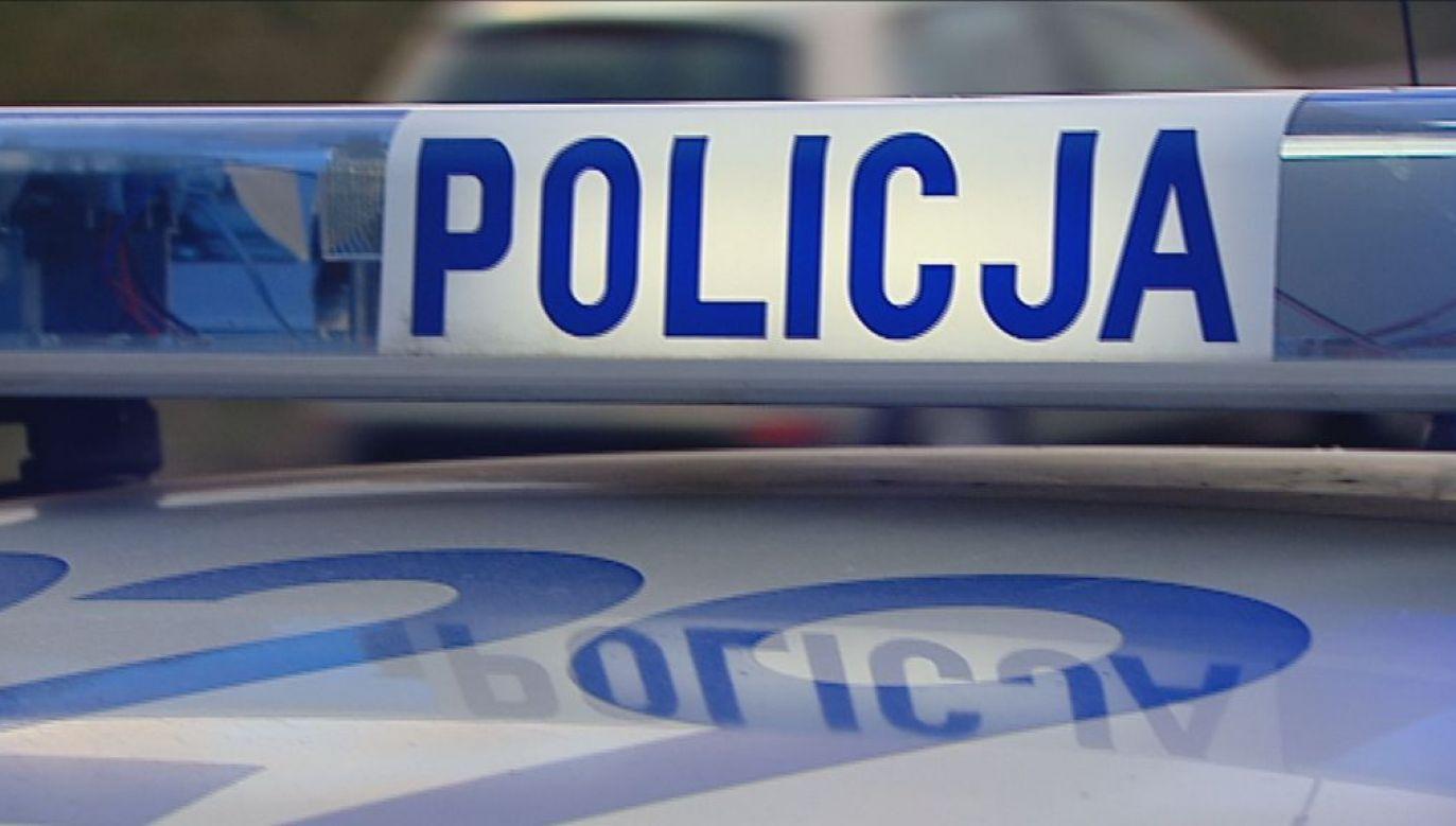 Kierowca uderzył w drzewo/ fot. TVP3 Łódź