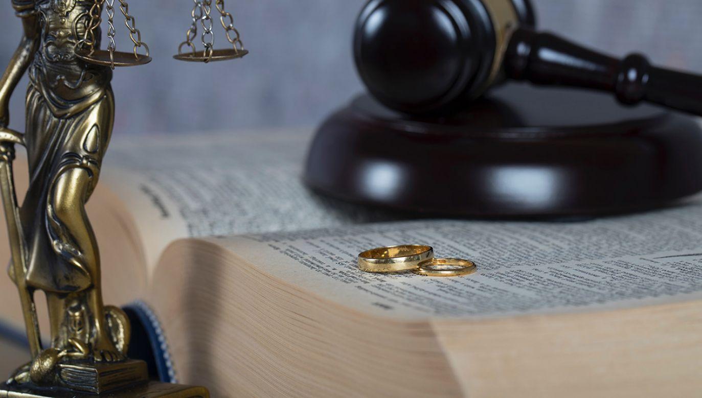 Czy sąd jest bezstronny? Sędzią jest żona jednego z podejrzanych (fot. Shutterstock/Tolikoff Photography)