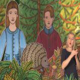 Ala i Antek spotykają w lesie jeża