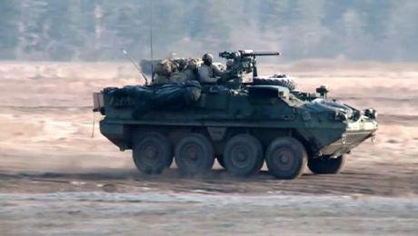 Puma na poligonie. Ćwiczenia wojsk NATO na finiszu