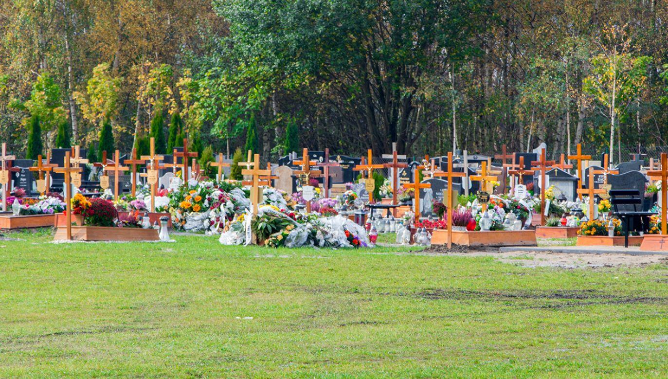 Mężczyzna okradł 46 grobów (fot. Shutterstock/Robson90)