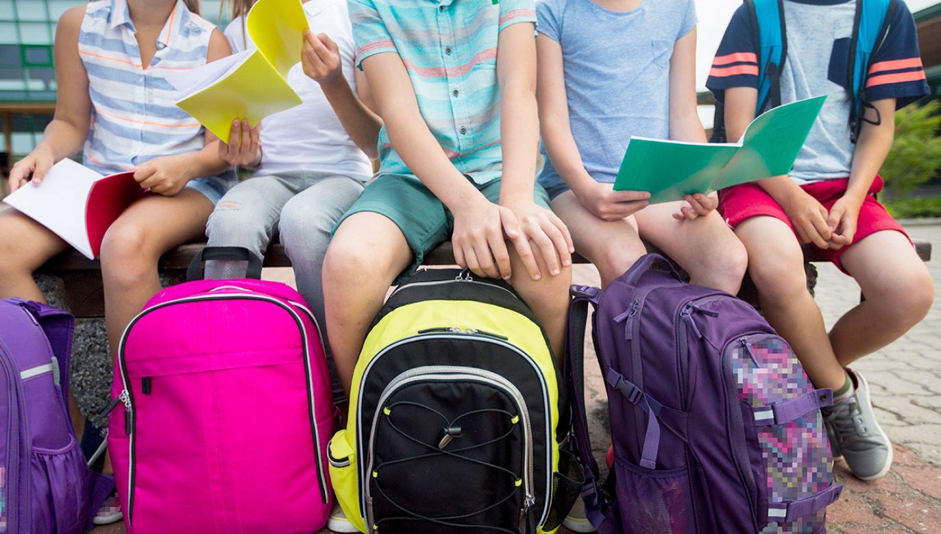 Uczniowie zostali zapytani o szczegóły dotyczące życia rodziny (fot. Shutterstock/Syda Productions)
