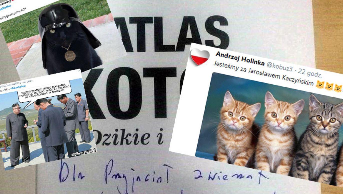 (fot. tt/300polityka/Andrzej Holinka/Ewa Szczodry/GDworska)