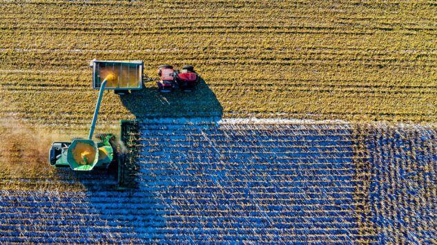 Produkty rolnicze w wymianie handlowej między UE i USA pozostaną objęte cłem (fot. Pexels)