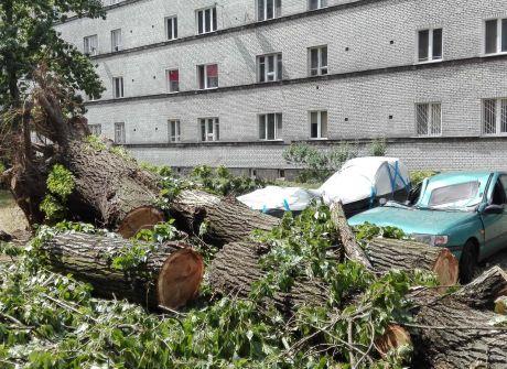 Skutki nawałnicy w Warszawie - foto. wot24@tvp.pl