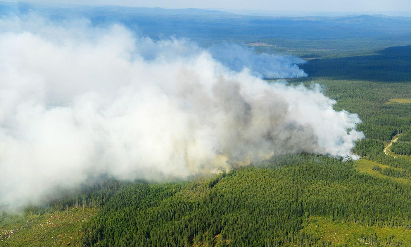 (fot. PAP/EPA/Maja Suslin)