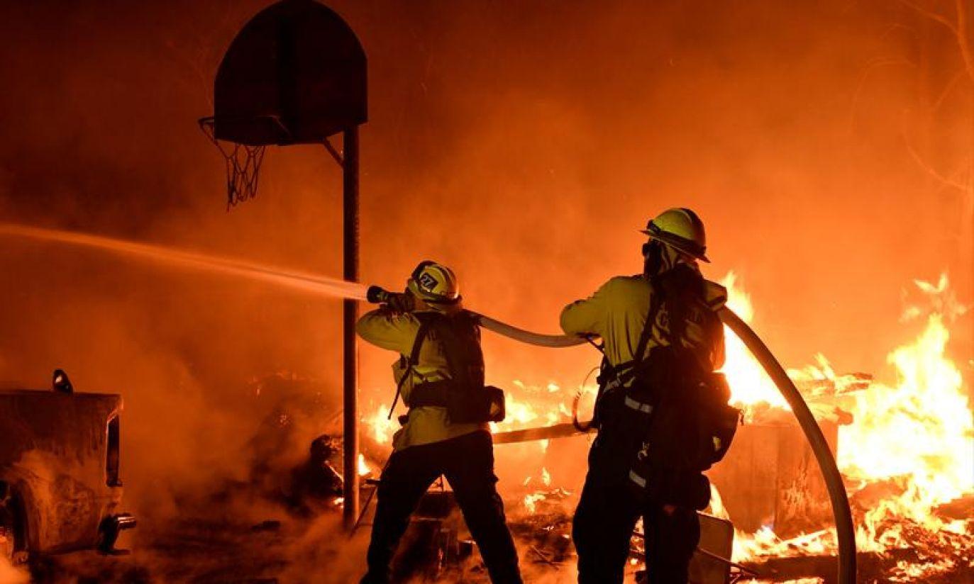 (fot.  REUTERS/Gene Blevins)