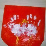 Hubert Gleba, 5 lat, Olsztyn