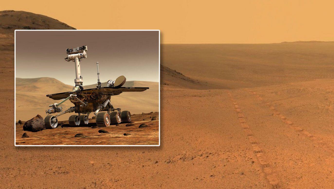 Łazik Opportunity (fot. TT/SPACE.com/PAP/EPA/NASA)
