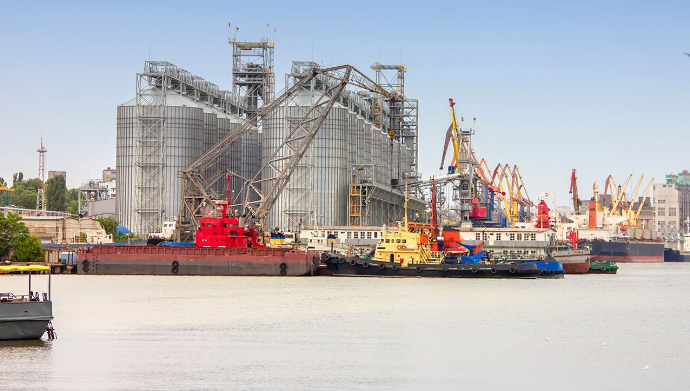 W ubiegłym roku eksport samej produkcji rolno-spożywczej był wart około 30 mld euro (fot. Shutterstock/Koliadzynska Iryna, zdjęcie ilustracyjne)