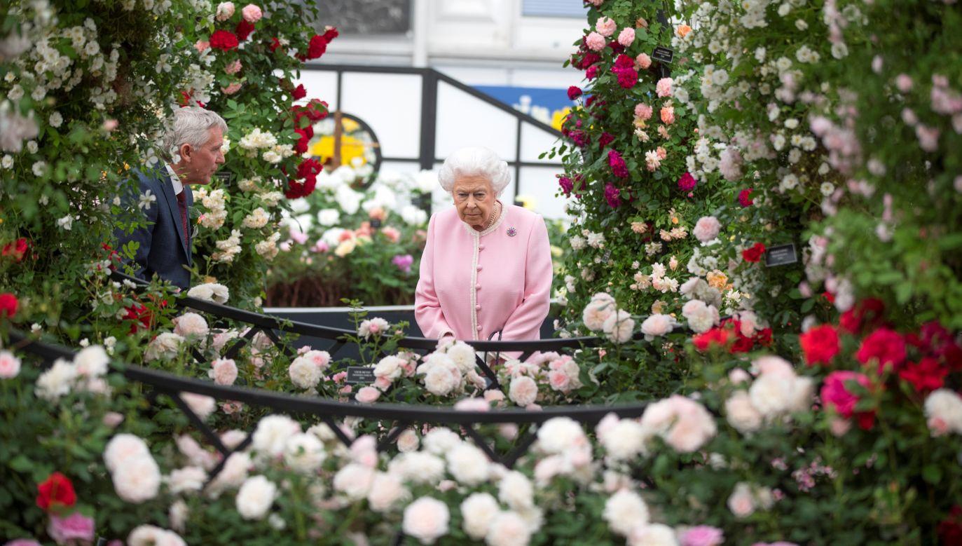 Królowa Elżbieta II, która jest największą beneficjentką unijnych dopłat, w maju odwiedziła słynną wystawę kwiatów Chelsea Flower Show w Londynie. Fot. Chris Jackson/Reuters