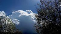 Zbiera się na wiosenną burzę (fot. Kazimierz Martyniak)