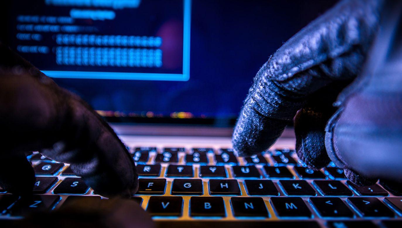 Rosyjscy hakerzy włamali się do systemów komputerowych ponad 100 ukraińskich instytucji (fot. Shutterstock/welcomia)