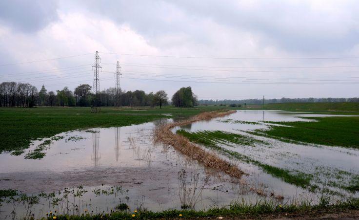 W wielu powiatach doszło do lokalnych podtopień (fot.  PAP/Andrzej Grygiel)